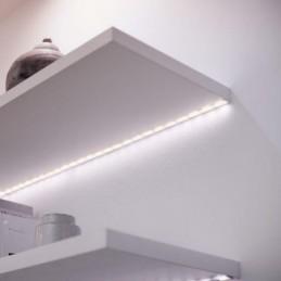 Cartus Inkjet EPSON T40D440...