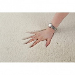 Dell Notebook backpack AW...