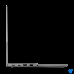 Puzzle carton, Insecte