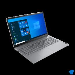 Puzzle carton, Dinozaur